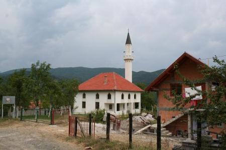drinsko